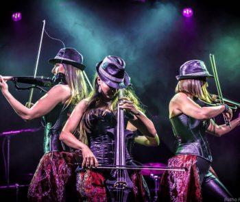 Secret Violin Photo