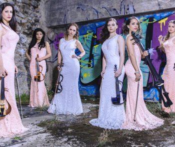 Secret Violin Photos (1)