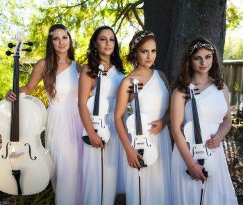 Secret Violin Photos (6)