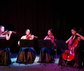 Secret Violin Photos (7)